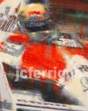 Ayrton Senna detail